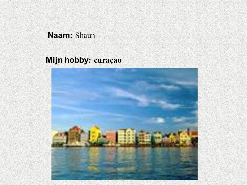 """Naam: Shaun Mijn hobby : curaçao Klik op """"Naam"""". Vul je naam in. Doe hetzelfde met """"hobby"""" Hier kun je een foto / tekening Invoegen"""