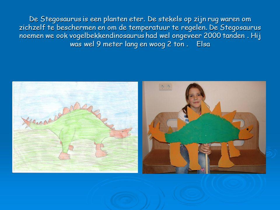 De Stegosaurus is een planten eter. De stekels op zijn rug waren om zichzelf te beschermen en om de temperatuur te regelen. De Stegosaurus noemen we o