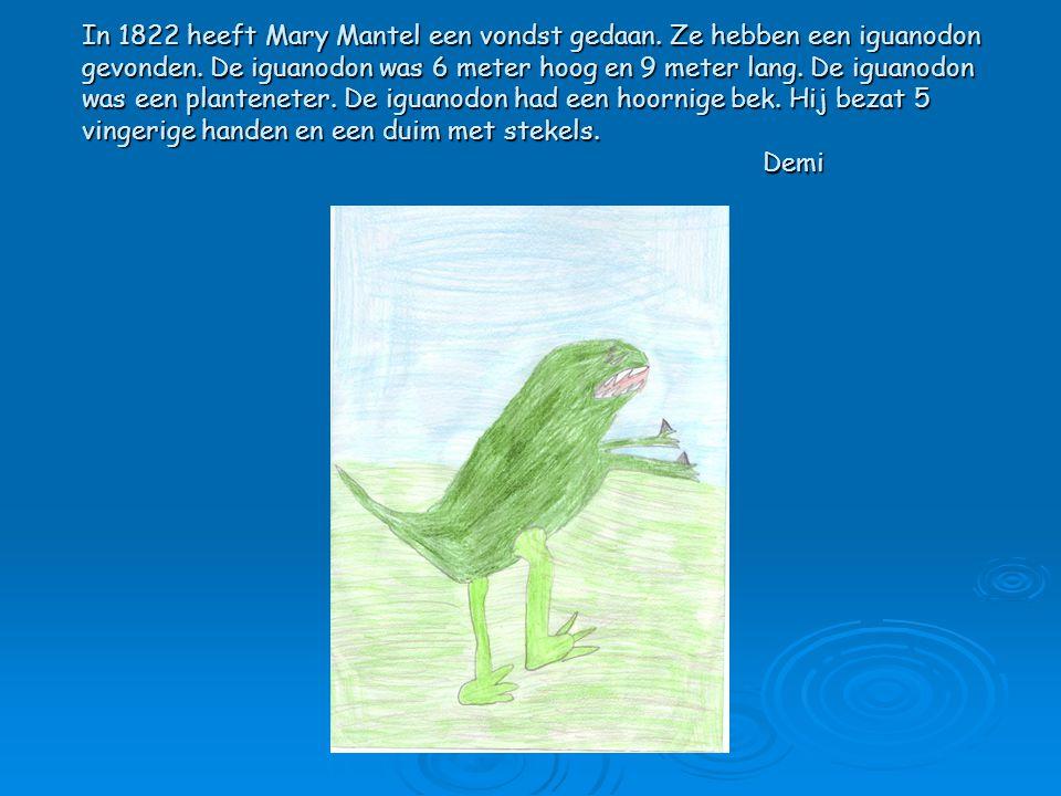 In 1822 heeft Mary Mantel een vondst gedaan. Ze hebben een iguanodon gevonden. De iguanodon was 6 meter hoog en 9 meter lang. De iguanodon was een pla
