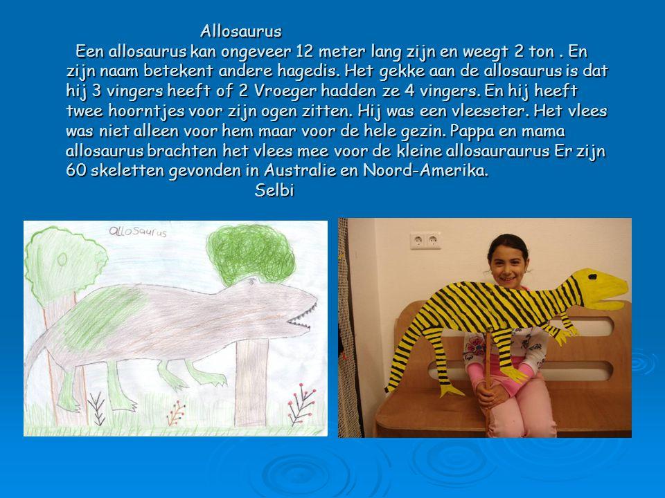 Allosaurus Een allosaurus kan ongeveer 12 meter lang zijn en weegt 2 ton. En zijn naam betekent andere hagedis. Het gekke aan de allosaurus is dat hij