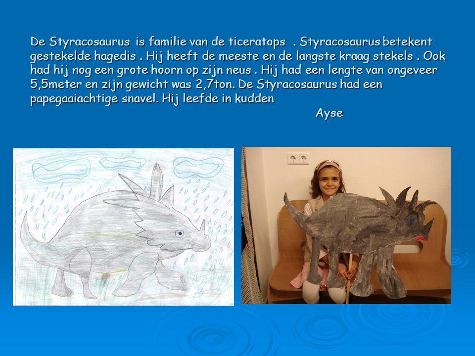 De Styracosaurus is familie van de ticeratops. Styracosaurus betekent gestekelde hagedis. Hij heeft de meeste en de langste kraag stekels. Ook had hij