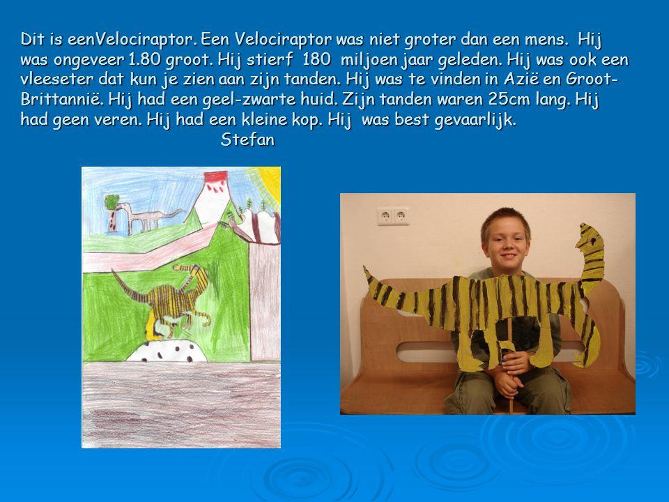 Dit is eenVelociraptor. Een Velociraptor was niet groter dan een mens. Hij was ongeveer 1.80 groot. Hij stierf 180 miljoen jaar geleden. Hij was ook e
