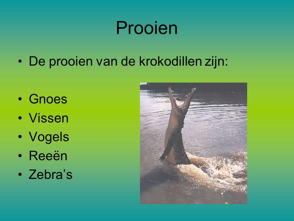 Prooien De prooien van de krokodillen zijn: Gnoes Vissen Vogels Reeën Zebra's