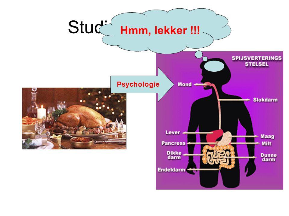 Studie van Voeding Psychologie Hmm, lekker !!!