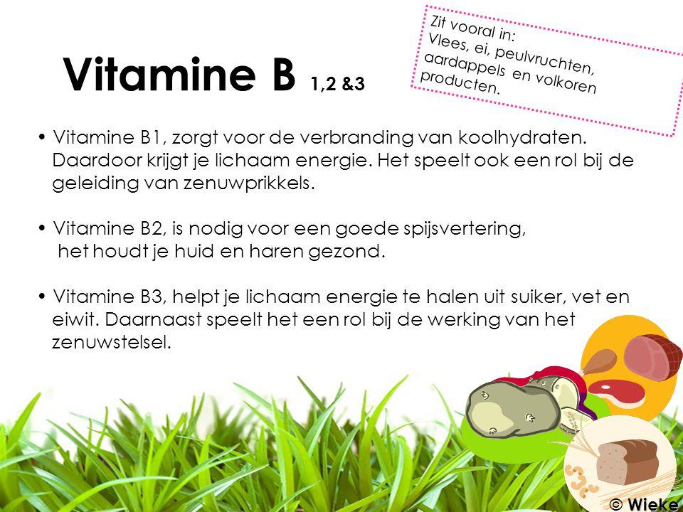 Vitamine B 1,2 &3 Vitamine B1, zorgt voor de verbranding van koolhydraten. Daardoor krijgt je lichaam energie. Het speelt ook een rol bij de geleiding