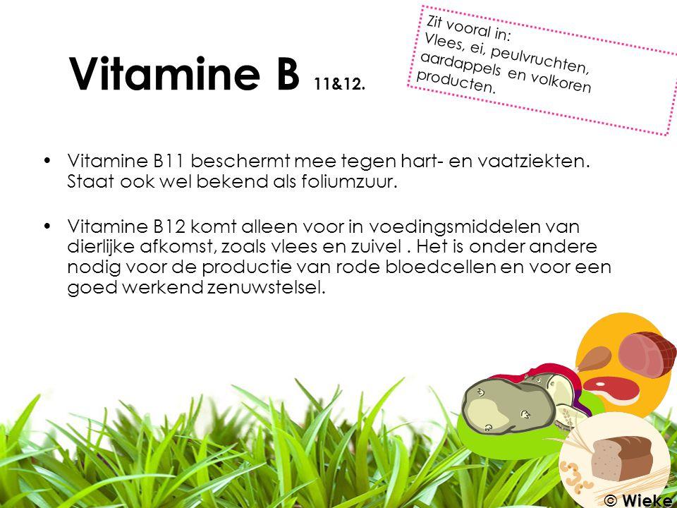 Vitamine B11 beschermt mee tegen hart- en vaatziekten. Staat ook wel bekend als foliumzuur. Vitamine B12 komt alleen voor in voedingsmiddelen van dier