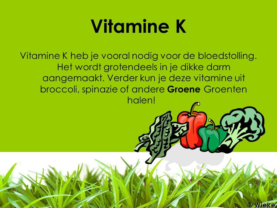 Vitamine K Vitamine K heb je vooral nodig voor de bloedstolling. Het wordt grotendeels in je dikke darm aangemaakt. Verder kun je deze vitamine uit br