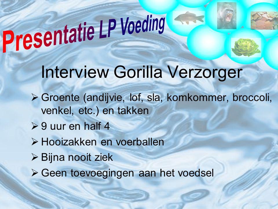 Interview Gorilla Verzorger  Groente (andijvie, lof, sla, komkommer, broccoli, venkel, etc.) en takken  9 uur en half 4  Hooizakken en voerballen  Bijna nooit ziek  Geen toevoegingen aan het voedsel