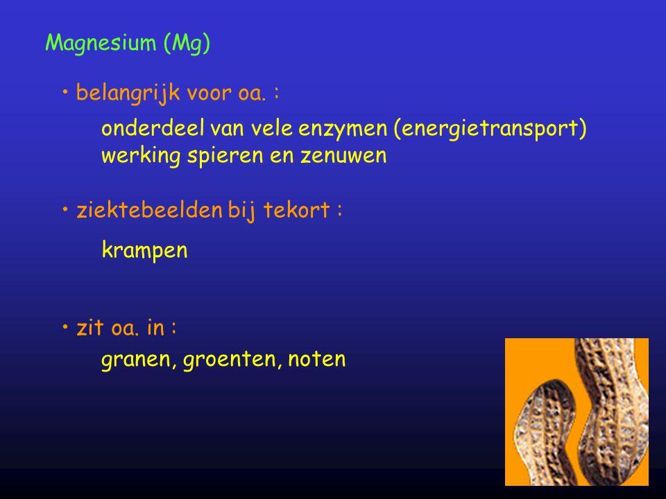 Magnesium (Mg) onderdeel van vele enzymen (energietransport) werking spieren en zenuwen belangrijk voor oa. : zit oa. in : ziektebeelden bij tekort :