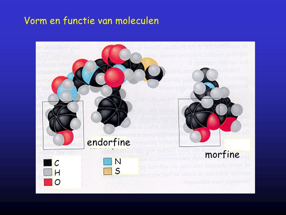 Vorm en functie van moleculen endorfine morfine CHOCHO NSNS