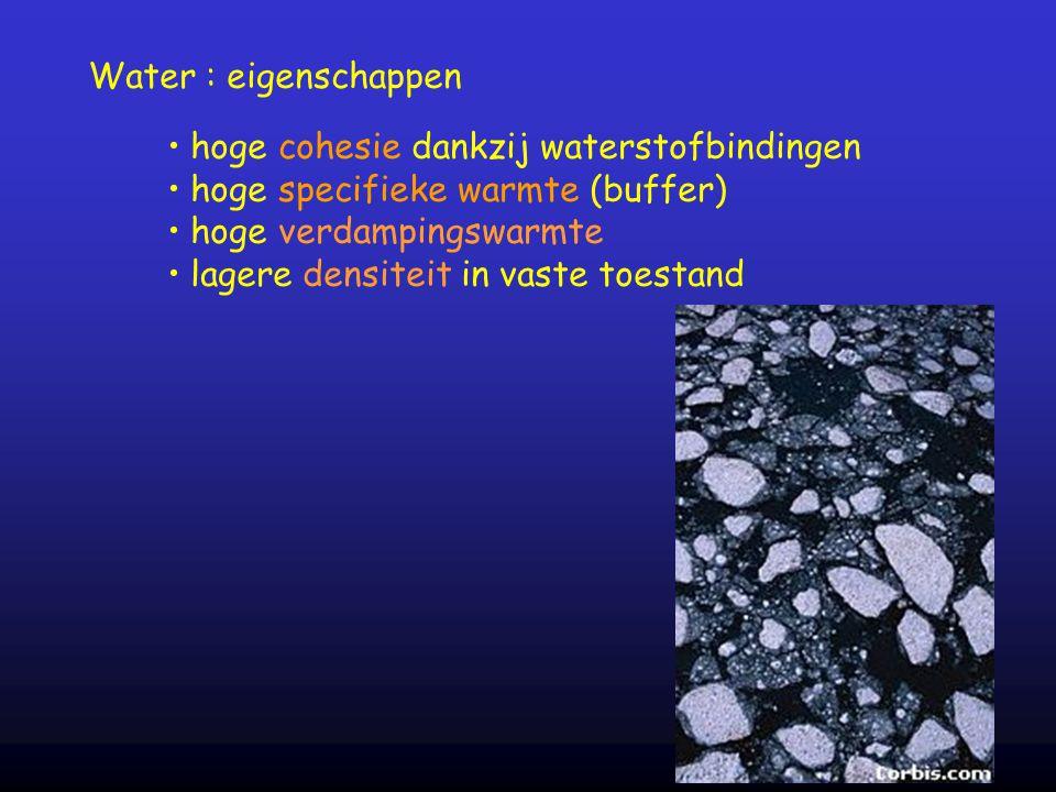 Water : eigenschappen hoge cohesie dankzij waterstofbindingen hoge specifieke warmte (buffer) hoge verdampingswarmte lagere densiteit in vaste toestan