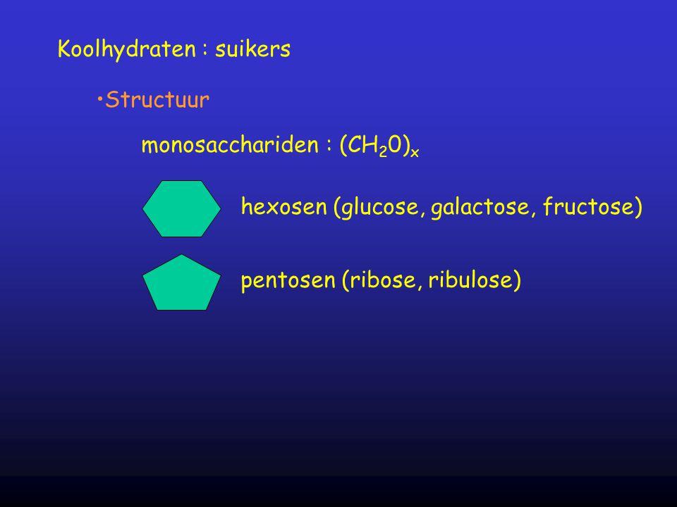 Koolhydraten : suikers Structuur monosacchariden : (CH 2 0) x hexosen (glucose, galactose, fructose) pentosen (ribose, ribulose)