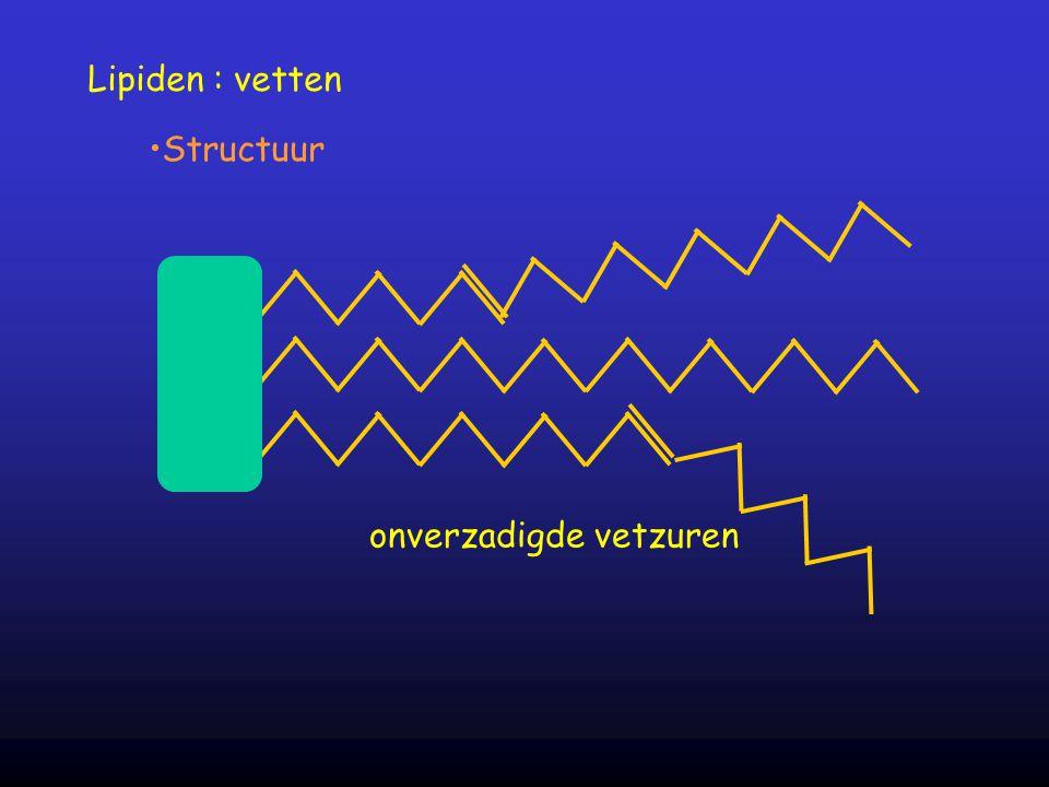 Lipiden : vetten Structuur onverzadigde vetzuren