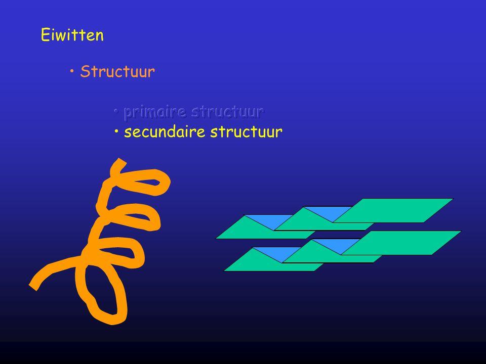 Eiwitten Structuur