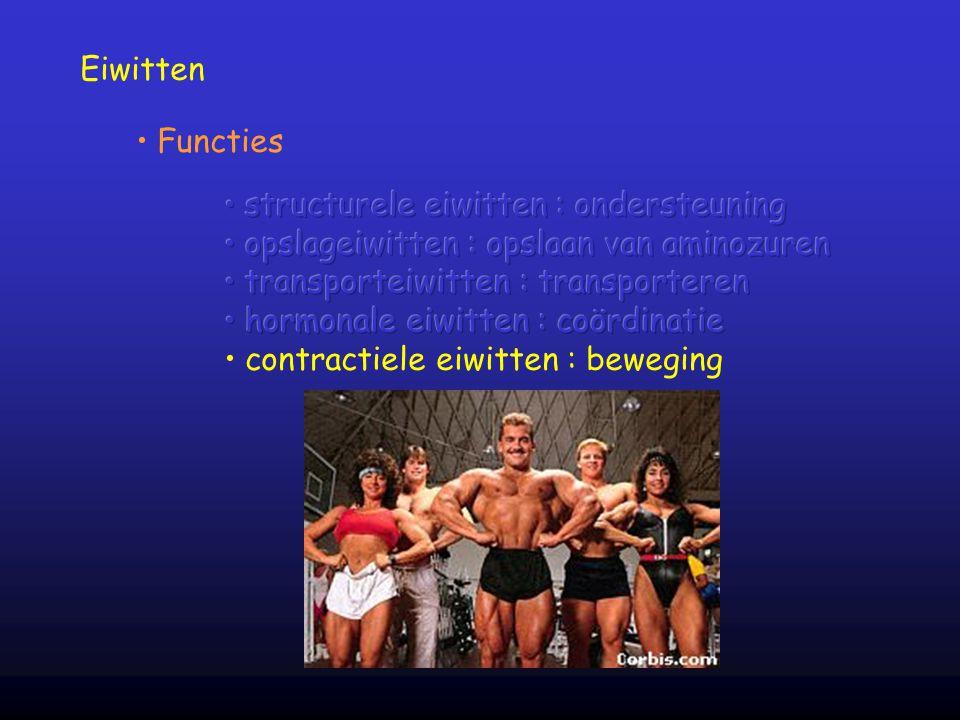Eiwitten Functies