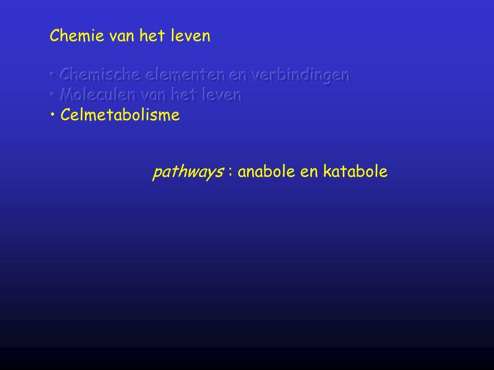 pathways : anabole en katabole