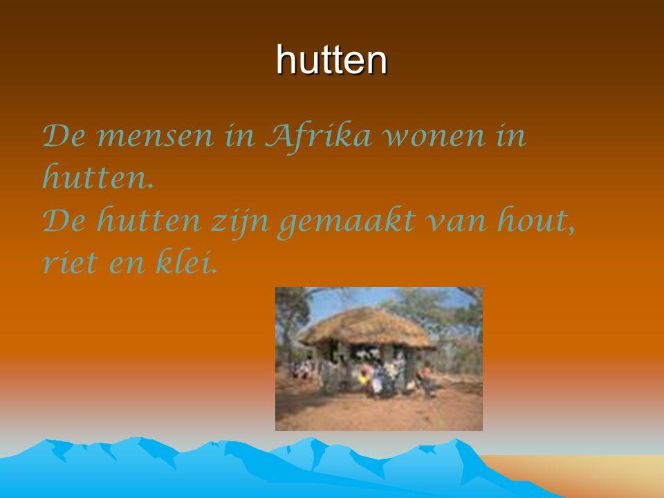 hutten De mensen in Afrika wonen in hutten. De hutten zijn gemaakt van hout, riet en klei.