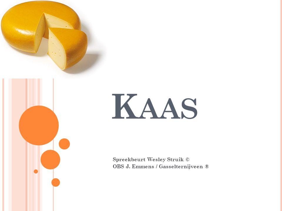 K AAS Spreekbeurt Wesley Struik © OBS J. Emmens / Gasselternijveen ®