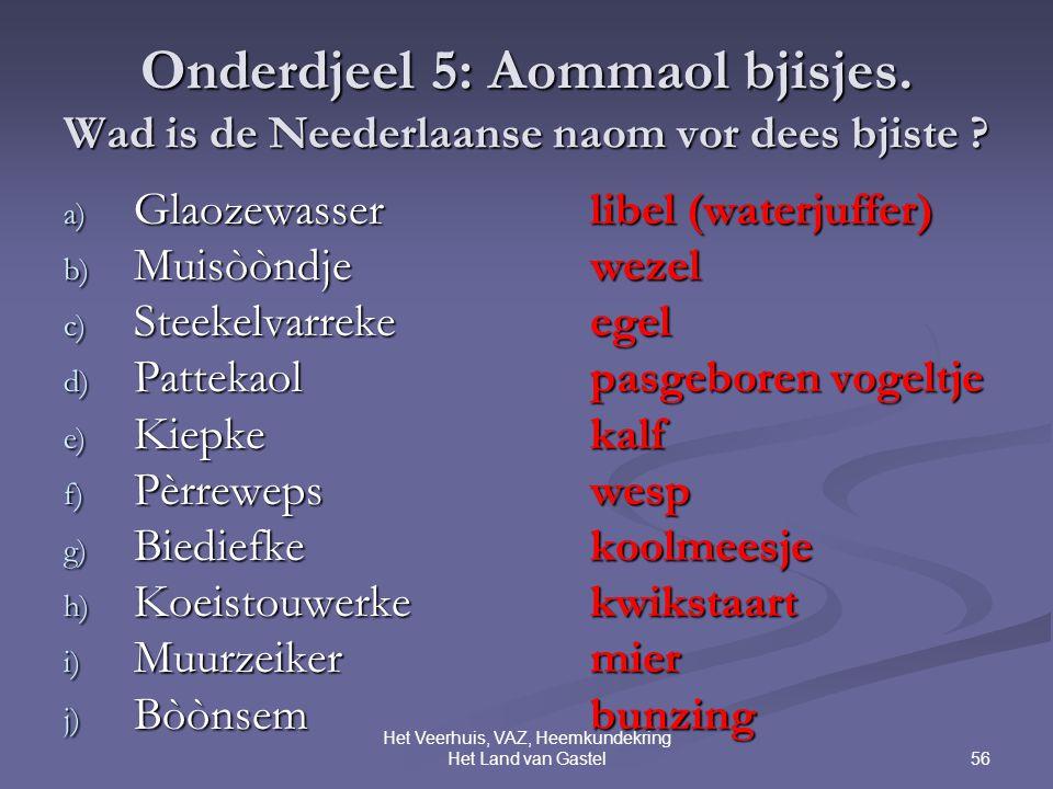 56 Het Veerhuis, VAZ, Heemkundekring Het Land van Gastel Onderdjeel 5: Aommaol bjisjes.