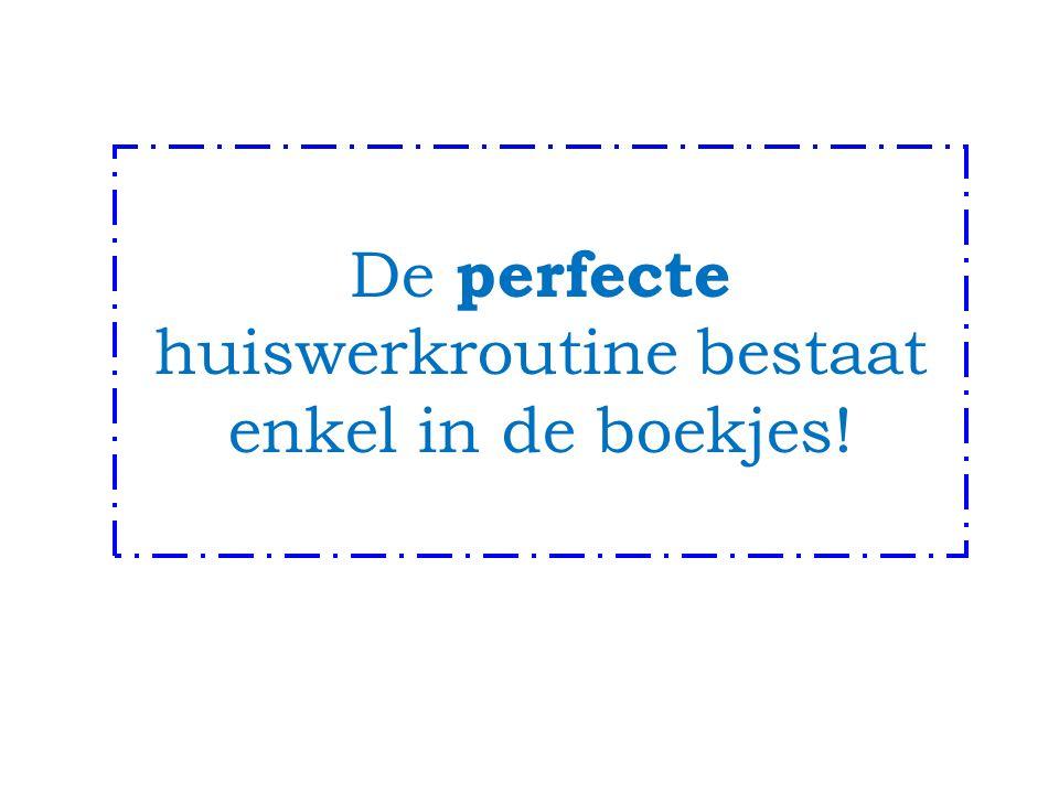 De perfecte huiswerkroutine bestaat enkel in de boekjes!