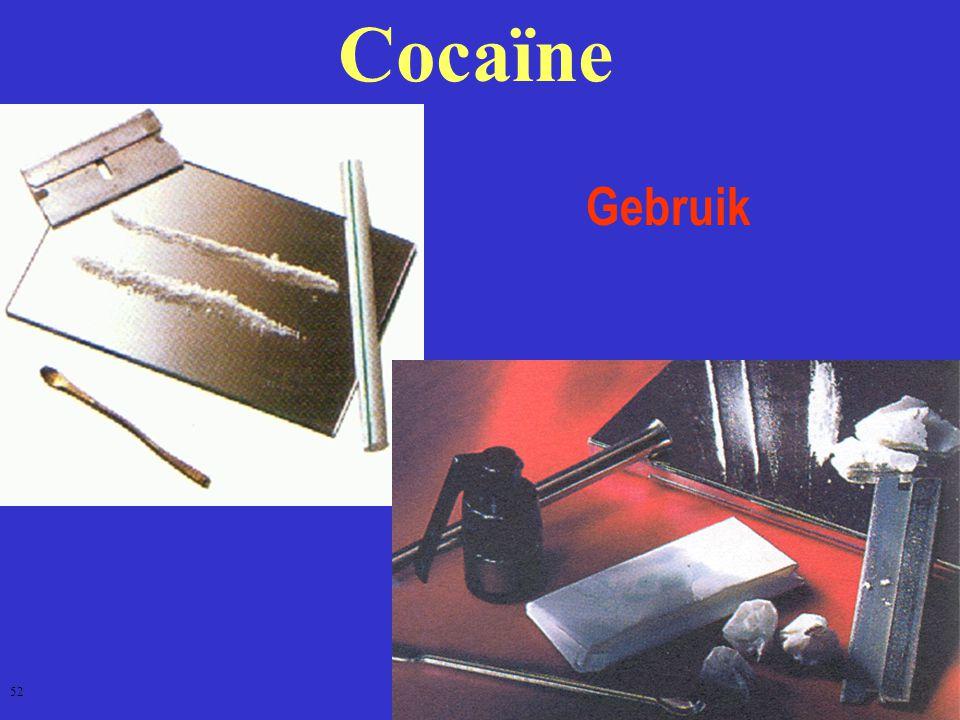 Cocaïne Gebruik 52