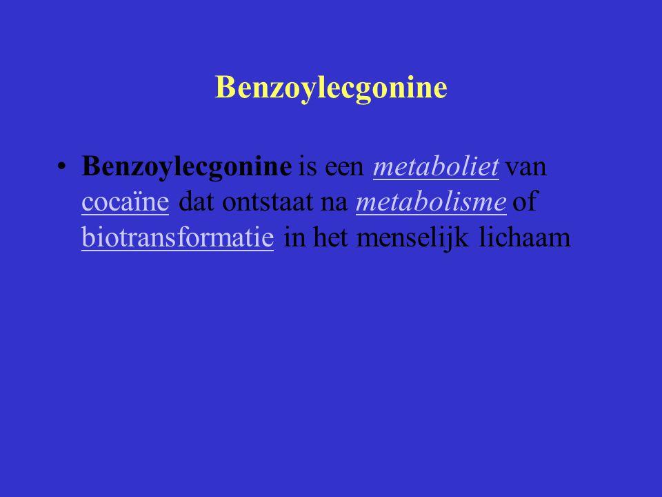 Benzoylecgonine Benzoylecgonine is een metaboliet van cocaïne dat ontstaat na metabolisme of biotransformatie in het menselijk lichaammetaboliet cocaï
