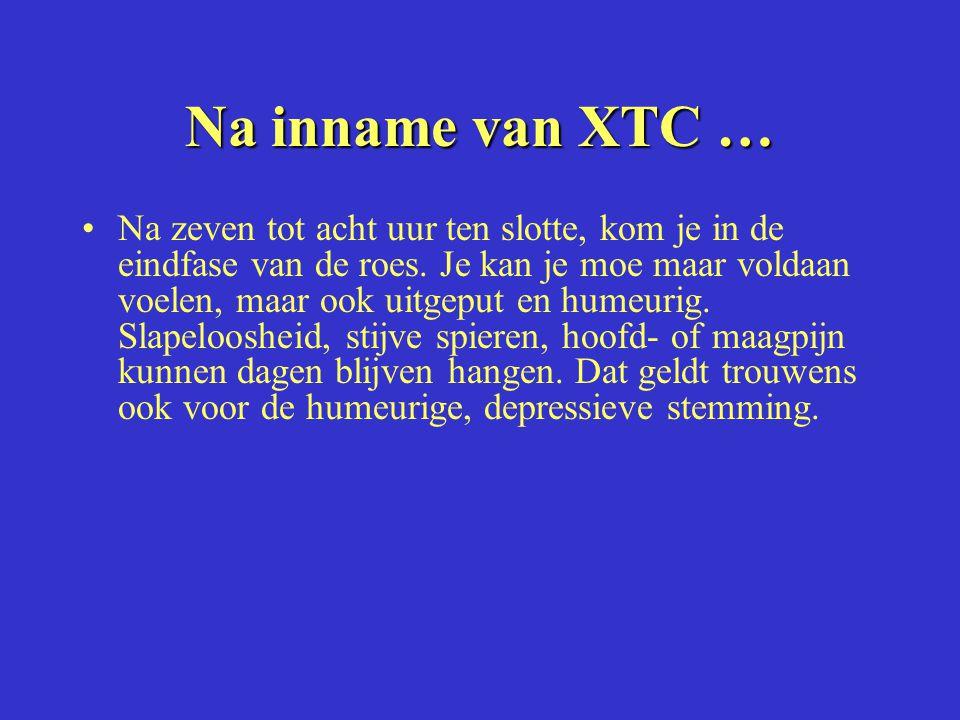 Na inname van XTC … Na zeven tot acht uur ten slotte, kom je in de eindfase van de roes.