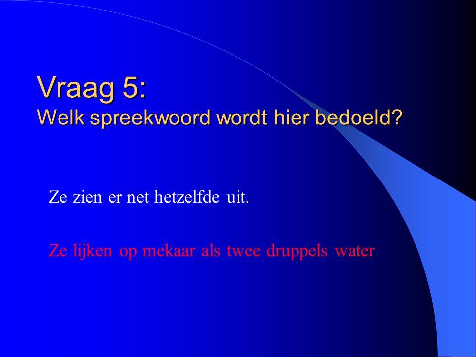 Vraag 5: Welk spreekwoord wordt hier bedoeld.Ze zien er net hetzelfde uit.
