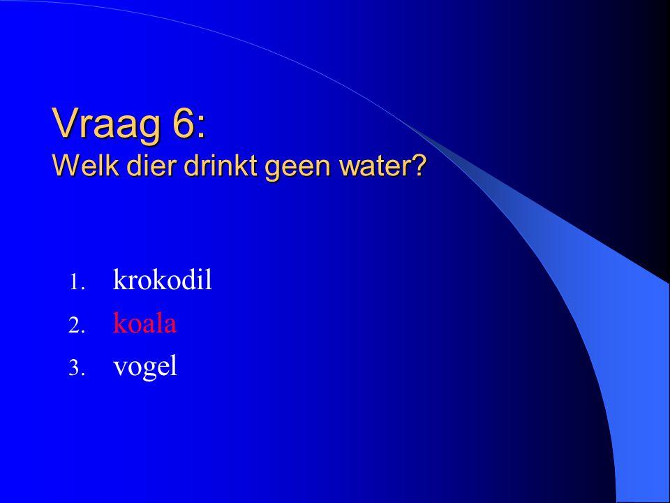 Vraag 6: Welk dier drinkt geen water? 1. krokodil 2. koala 3. vogel