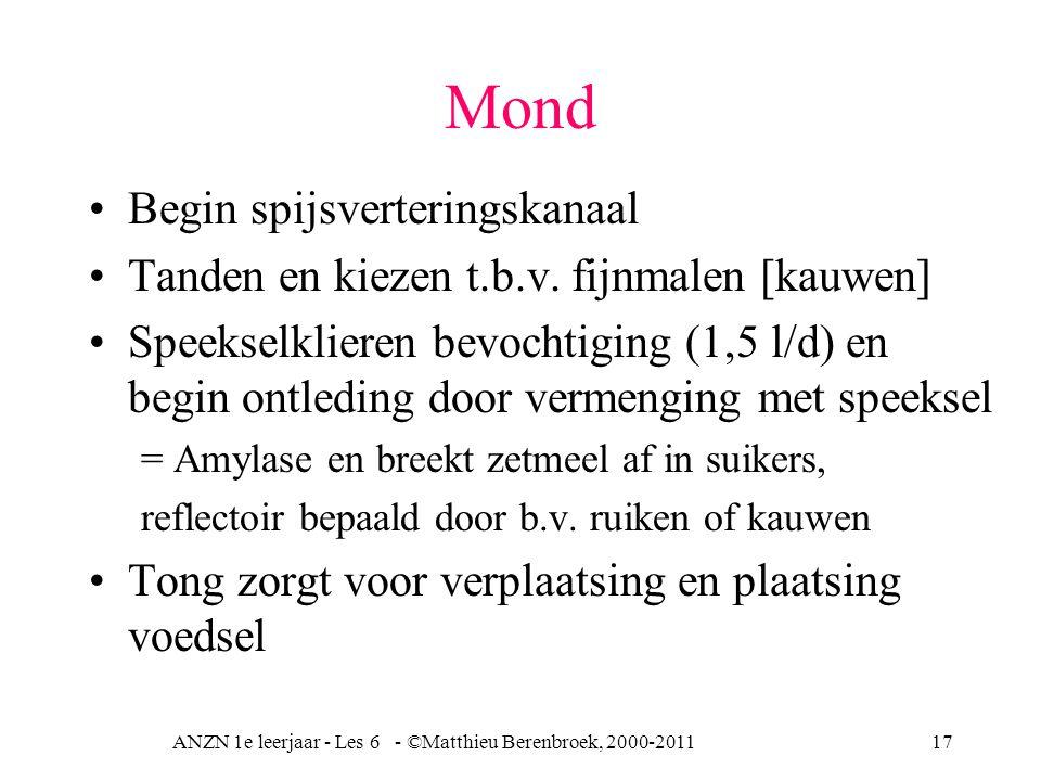 ANZN 1e leerjaar - Les 6 - ©Matthieu Berenbroek, 2000-201117 Mond Begin spijsverteringskanaal Tanden en kiezen t.b.v. fijnmalen [kauwen] Speekselklier