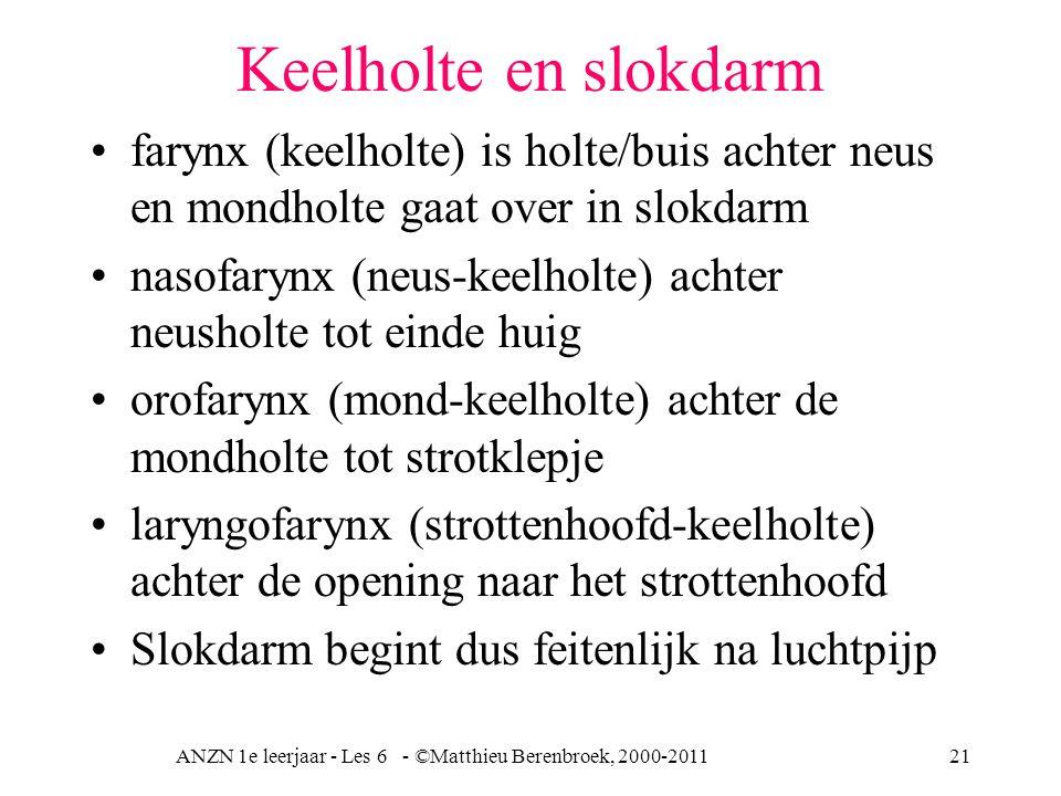 ANZN 1e leerjaar - Les 6 - ©Matthieu Berenbroek, 2000-201121 Keelholte en slokdarm farynx (keelholte) is holte/buis achter neus en mondholte gaat over