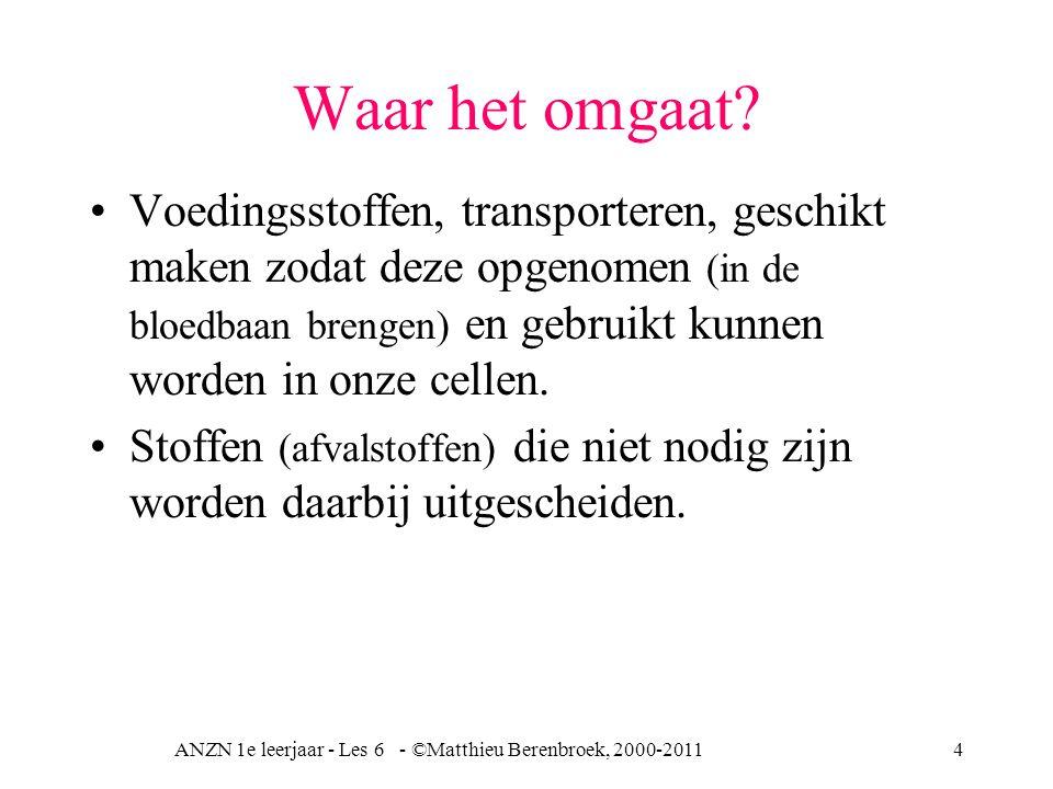 ANZN 1e leerjaar - Les 6 - ©Matthieu Berenbroek, 2000-20114 Waar het omgaat? Voedingsstoffen, transporteren, geschikt maken zodat deze opgenomen (in d