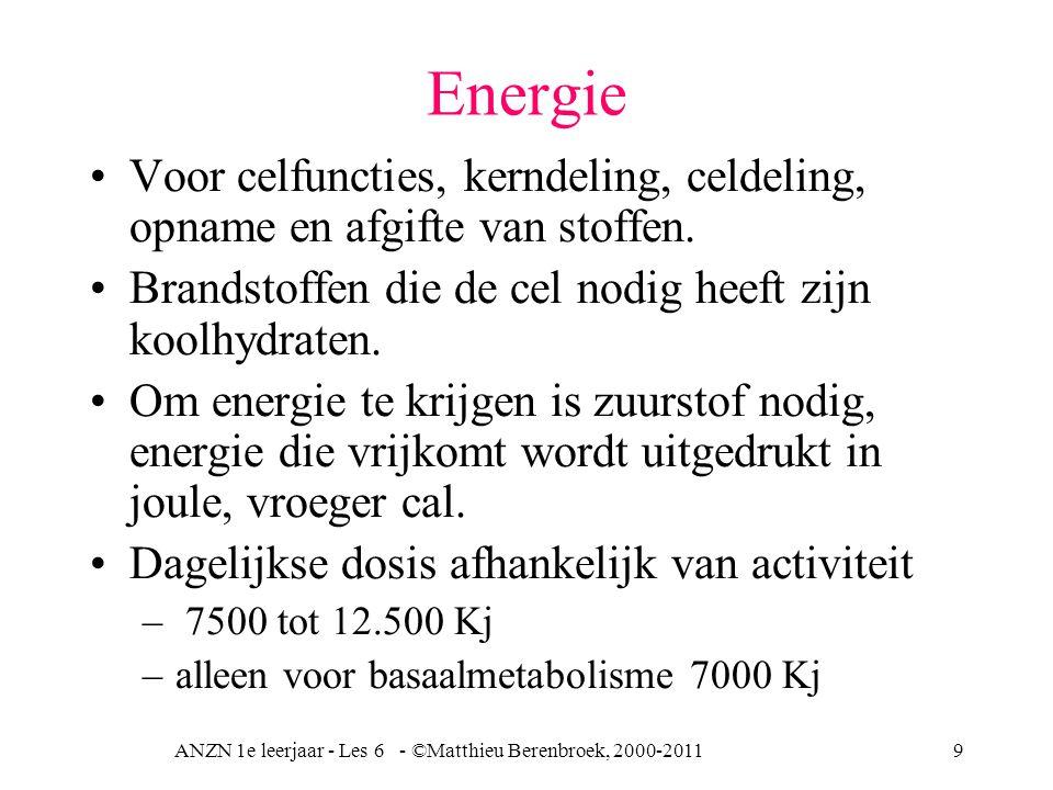ANZN 1e leerjaar - Les 6 - ©Matthieu Berenbroek, 2000-20119 Energie Voor celfuncties, kerndeling, celdeling, opname en afgifte van stoffen. Brandstoff