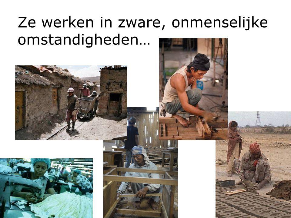 Ze werken in zware, onmenselijke omstandigheden…