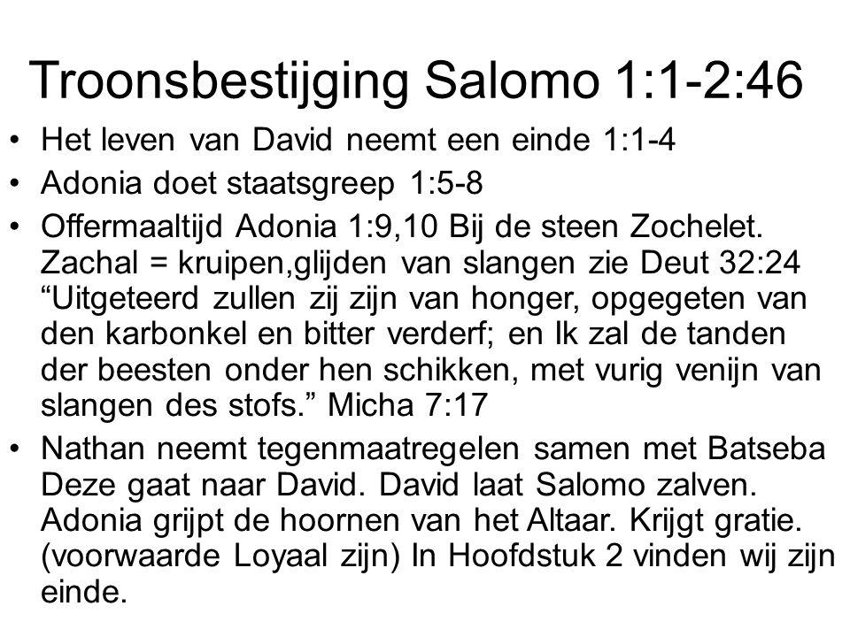Troonsbestijging Salomo 1:1-2:46 Het leven van David neemt een einde 1:1-4 Adonia doet staatsgreep 1:5-8 Offermaaltijd Adonia 1:9,10 Bij de steen Zoch
