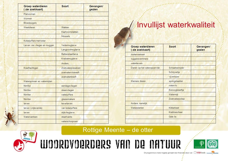 Invullijst waterkwaliteit Groep waterdieren ( zie zoekkaart) SoortGevangen/ gezien duikerwantsen ruggenzwemmers waterkevers Dieren op het wateroppervl