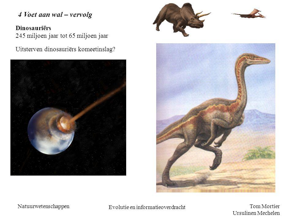Tom Mortier Ursulinen Mechelen Natuurwetenschappen Evolutie en informatieoverdracht 4 Voet aan wal – vervolg Dinosauriërs 245 miljoen jaar tot 65 milj
