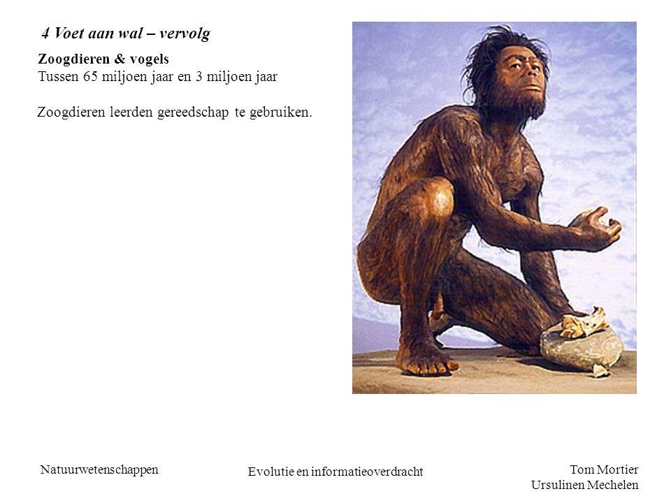 Tom Mortier Ursulinen Mechelen Natuurwetenschappen Evolutie en informatieoverdracht Zoogdieren & vogels Tussen 65 miljoen jaar en 3 miljoen jaar 4 Voe
