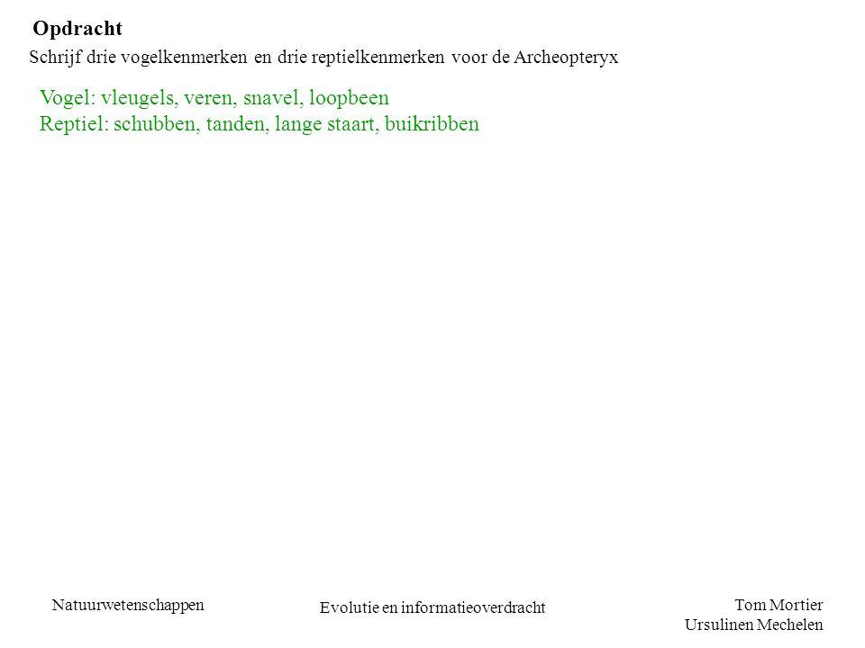 Tom Mortier Ursulinen Mechelen Natuurwetenschappen Evolutie en informatieoverdracht Opdracht Schrijf drie vogelkenmerken en drie reptielkenmerken voor