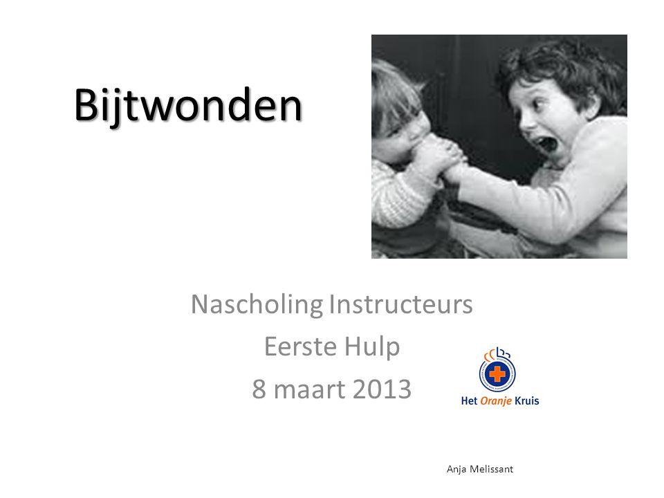 Bijtwonden Nascholing Instructeurs Eerste Hulp 8 maart 2013 Anja Melissant