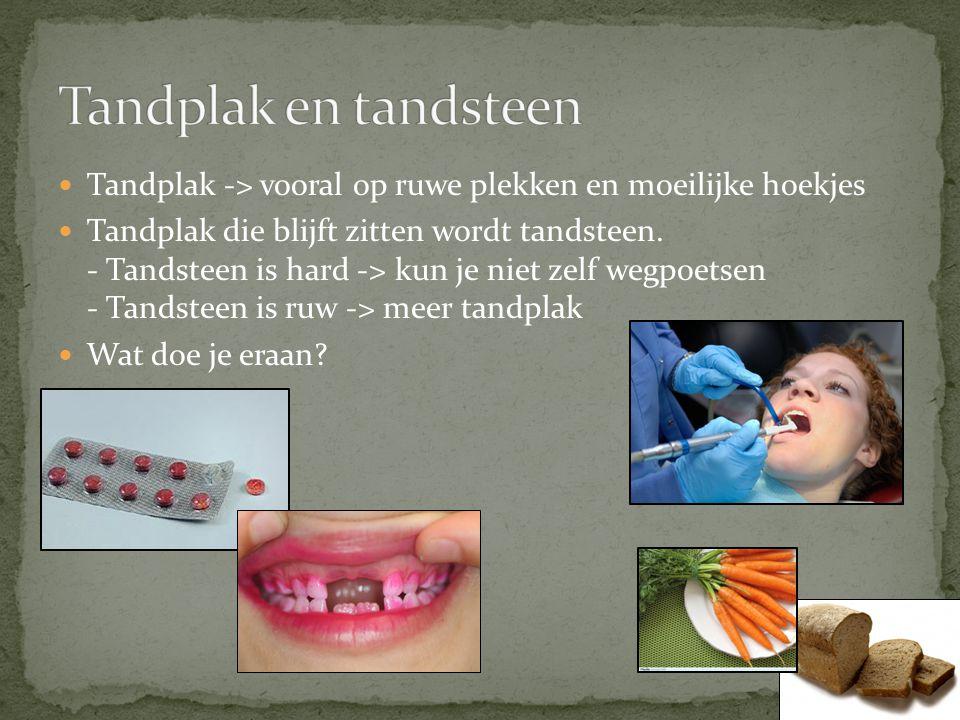 Tandplak -> vooral op ruwe plekken en moeilijke hoekjes Tandplak die blijft zitten wordt tandsteen. - Tandsteen is hard -> kun je niet zelf wegpoetsen