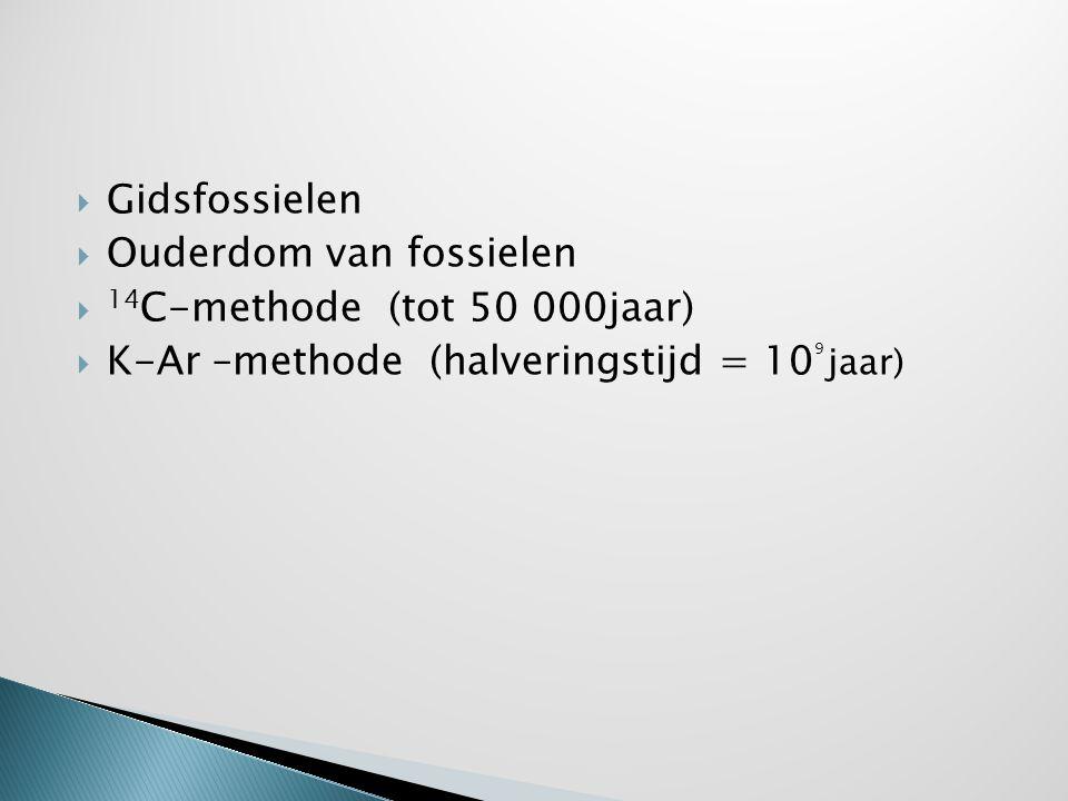  Gidsfossielen  Ouderdom van fossielen  14 C-methode (tot 50 000jaar)  K-Ar –methode (halveringstijd = 10 9 jaar)