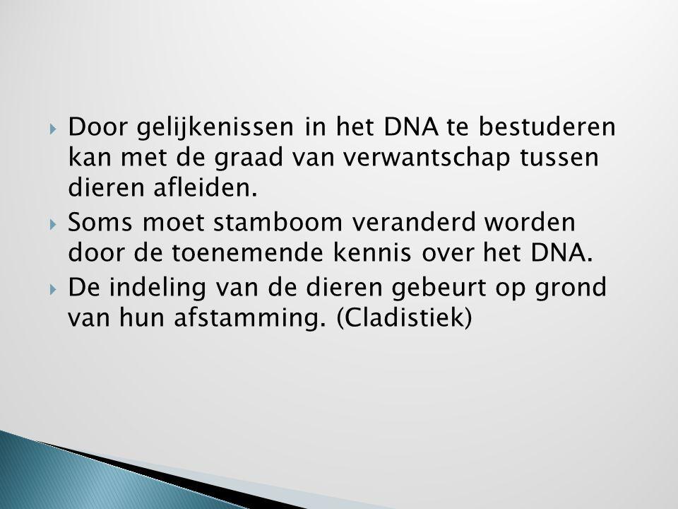  Door gelijkenissen in het DNA te bestuderen kan met de graad van verwantschap tussen dieren afleiden.  Soms moet stamboom veranderd worden door de
