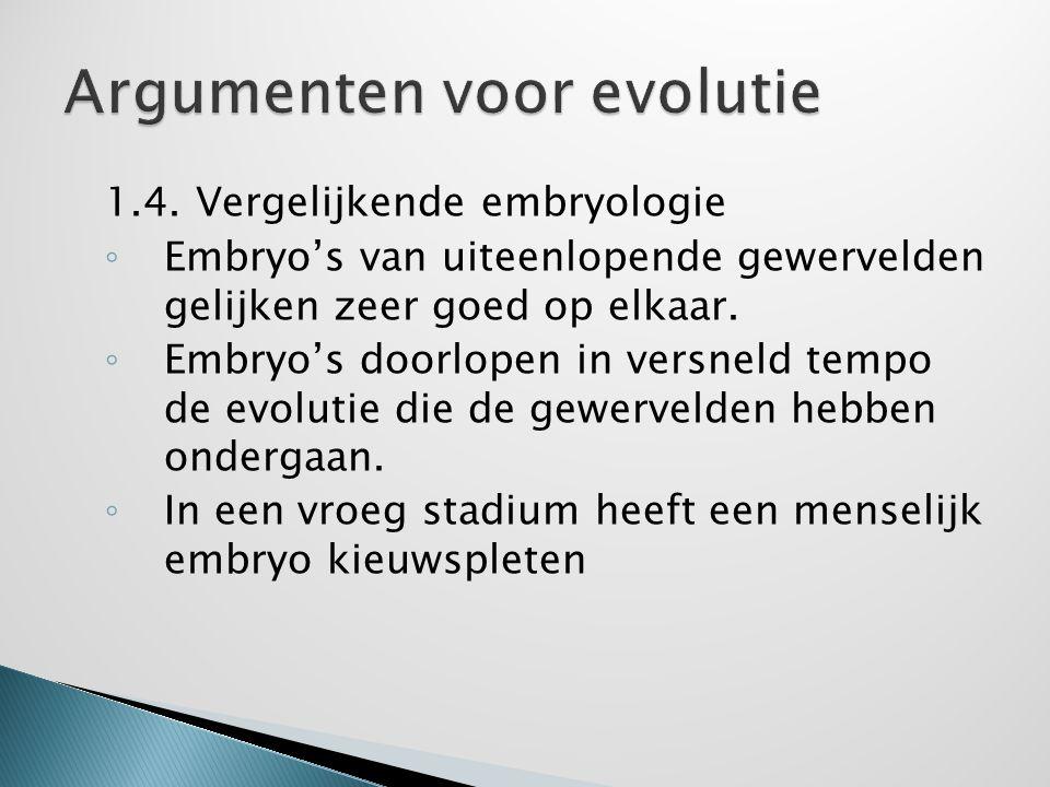 1.4. Vergelijkende embryologie ◦ Embryo's van uiteenlopende gewervelden gelijken zeer goed op elkaar. ◦ Embryo's doorlopen in versneld tempo de evolut