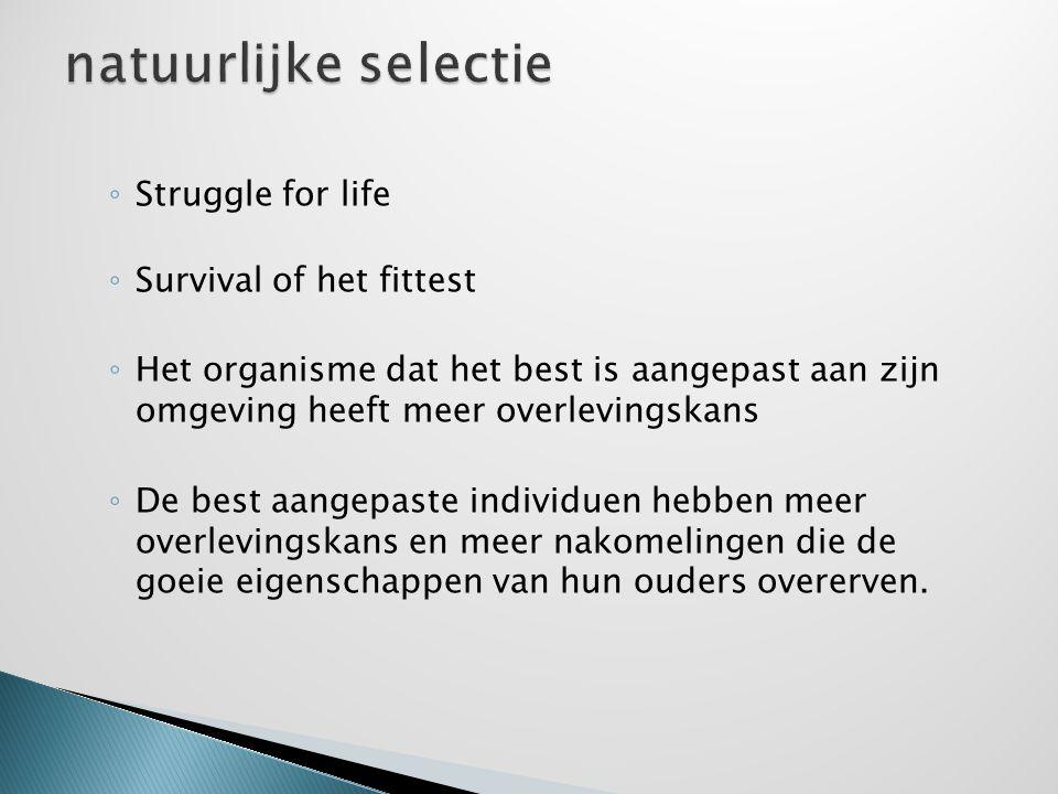 ◦ Struggle for life ◦ Survival of het fittest ◦ Het organisme dat het best is aangepast aan zijn omgeving heeft meer overlevingskans ◦ De best aangepa