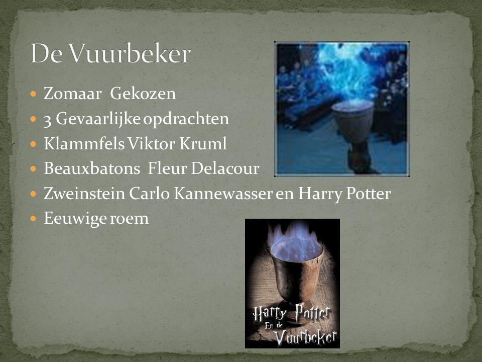 Zomaar Gekozen 3 Gevaarlijke opdrachten Klammfels Viktor Kruml Beauxbatons Fleur Delacour Zweinstein Carlo Kannewasser en Harry Potter Eeuwige roem