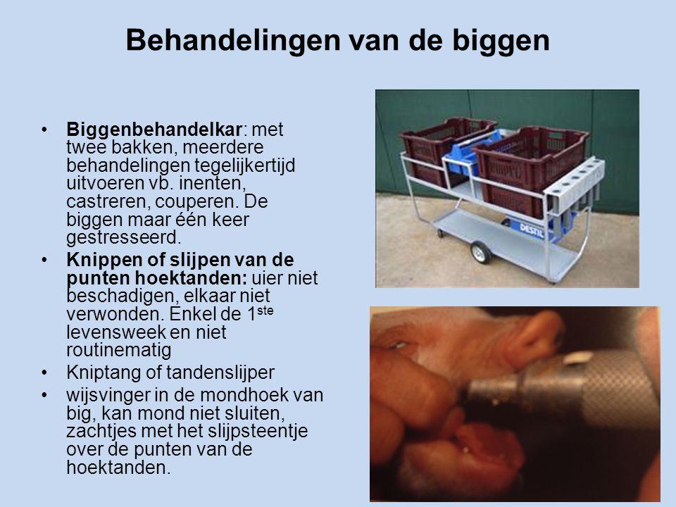 Behandelingen van de biggen Biggenbehandelkar: met twee bakken, meerdere behandelingen tegelijkertijd uitvoeren vb.