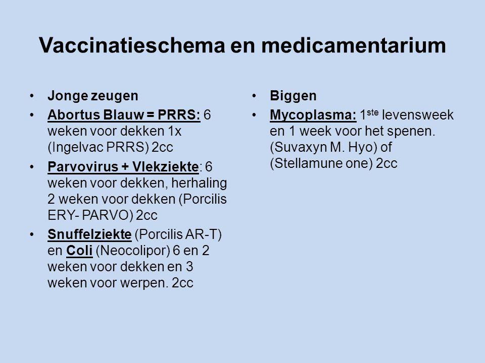 Vaccinatieschema en medicamentarium Jonge zeugen Abortus Blauw = PRRS: 6 weken voor dekken 1x (Ingelvac PRRS) 2cc Parvovirus + Vlekziekte: 6 weken voor dekken, herhaling 2 weken voor dekken (Porcilis ERY- PARVO) 2cc Snuffelziekte (Porcilis AR-T) en Coli (Neocolipor) 6 en 2 weken voor dekken en 3 weken voor werpen.