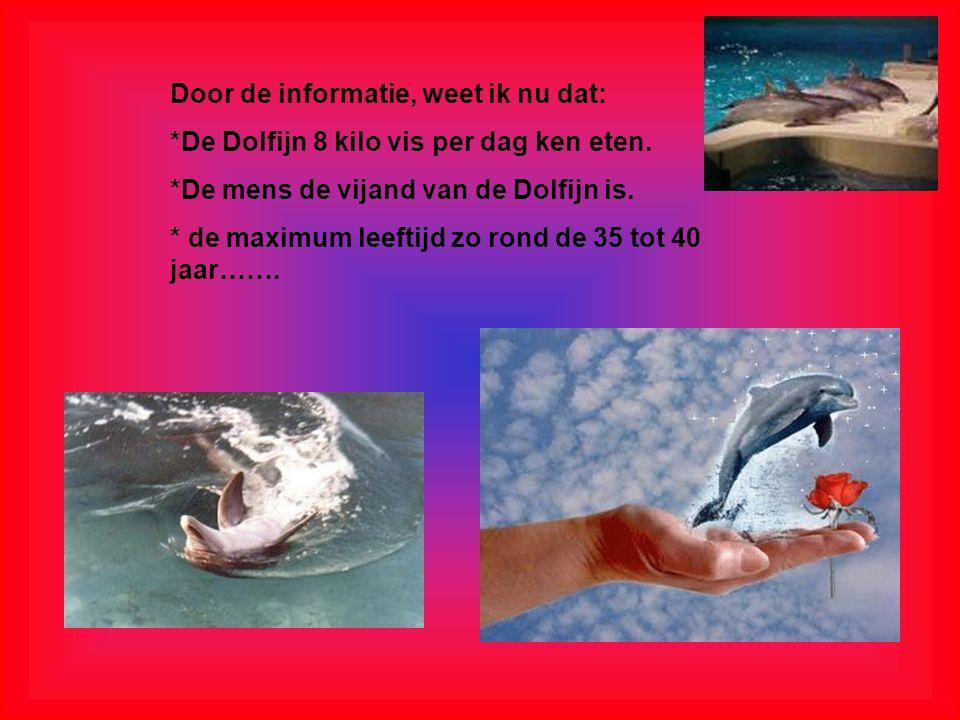 Door de informatie, weet ik nu dat: *De Dolfijn 8 kilo vis per dag ken eten.