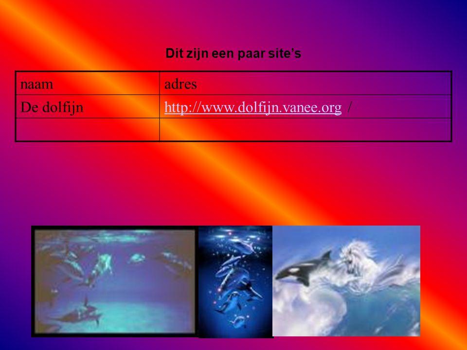 naamadres De dolfijnhttp://www.dolfijn.vanee.orghttp://www.dolfijn.vanee.org / Dit zijn een paar site's Als er geen verenigingen zijn, klik dan met de rechter muisknop op de 5e dia; klik op knippen
